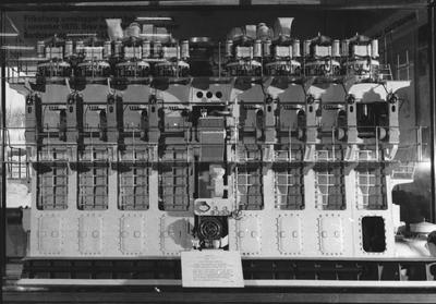 OMNIA - Modell c29cae8c341a4