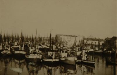 Fiskebåter i fiskevær