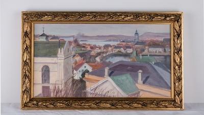 Utsikt fra museets tak