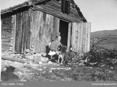 Fiskebua ved Kringletjern er ei gamal stove som vart kjøpt på Torsetsida i Hemsedal