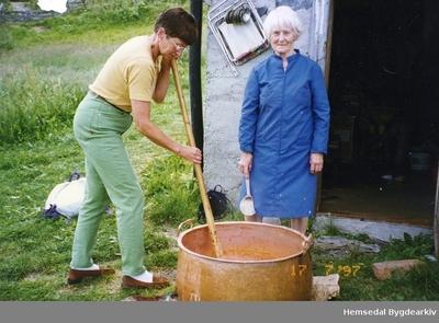 Mjølkeprimet skal kaldrørast på Bergastølen i Hemsedal i1997