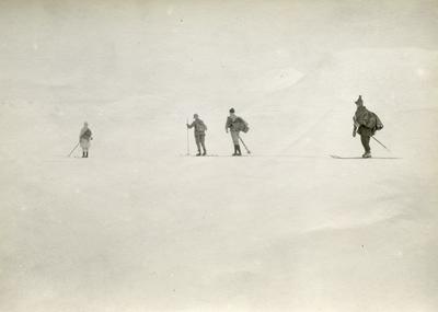 4 menn på ski
