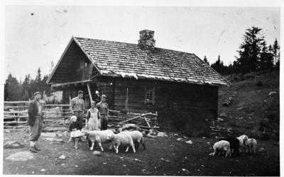 Størhuset på Vollumsætra i Kolbuåsen