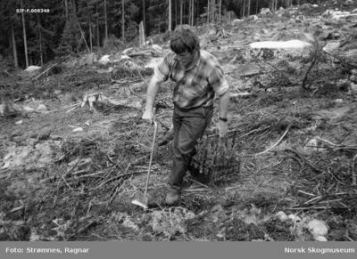 «Pottebrett M-95 med bærehåndtak. Ottar Skjølås.»«Planting pluggplanter. Eidsvoll p.g.skog, Hurdal, juni 1977.»