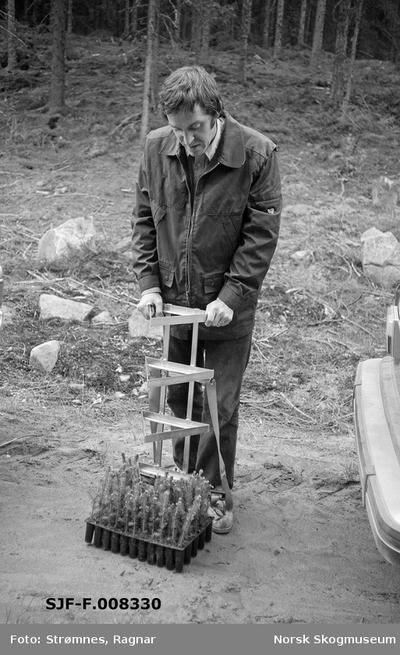 «Dekkrot pluggplanter i M-95 brett, hoftemeis og hullpipe.» «Konsulent Olav Kaveldiget demonstrerer planting. Jnui 1977»