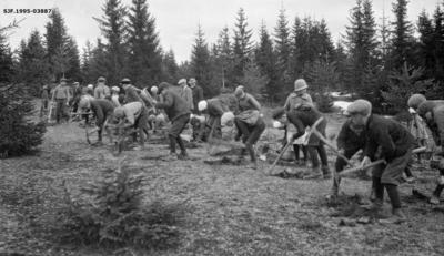 Fra planteprosjekt for skoleelever på garden Ulven i Ring-fjerdingen i Ringsaker kommune i Hedmark våren 1928