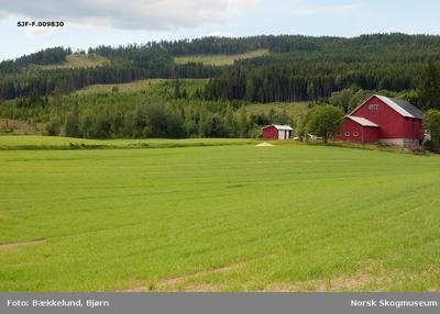 Landskapsbilde tatt mot Nesberget på Glommas vestside