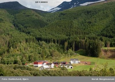 Landskapsbilde fra Valldal i Norddal kommune på Sunnmøre