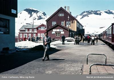 Finse stasjon med persontog