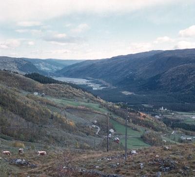 Utsikt mot Øst frå Øvrestølen