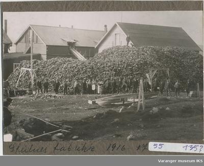 Guanofabrikken på Steilneset