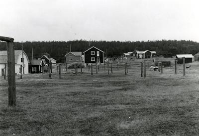 Ångermanland, Trysunda. Gistvallarna, som ligger i omedelbar anslutning till bebyggelsen. Det underhålls inte längre eftersom de moderna nylonnäten inte hängs på tork regelbundet. De används numera mest till att hänga tvätt på tork.
