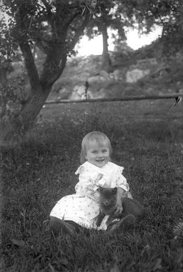 Landskap, bild: Bohuslän. Landskap, fotograf: Bohuslän. Flicka sittande i gräset, med en katt i knät är Signe Fransson. Troligen dotter till Elof Fransson Bokskogen?