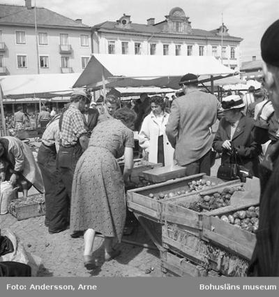 Enligt notering: Torgbilder U-a 7/7 1956.