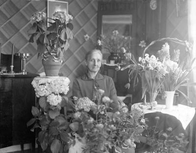 En äldre kvinna sitter i ett vardagsrum, med fullt av blommor runt omkring sig.  Förmodligen fyller hon år i samband med att bilden är tagen.  Bakom henne hänger en spegel på diagonalen i hörnet. Till vänster står ett skåp.