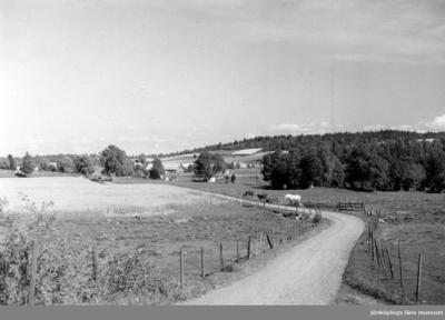 Vägen från Åkerby mot Mjälaryd i Tenhult.