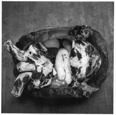 'Galapagossköldpadda, hane.Under arbetet med sköldpaddan i ateljen. Monterad av konservator Gunnar Enemyr. Fotograferad uppifrån, upp-och-ned, med inälvor synliga. Liggande på golvet. ::  :: Fynddatum: 1948-06-03. Död: 1948-12-09. ::  :: Ingår i serie med fotonr. 4467:1-4.'