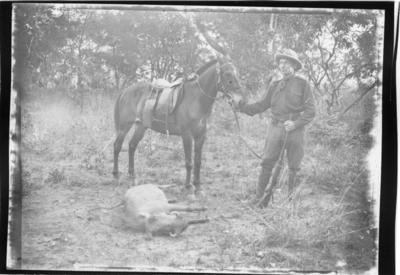 'Diverse fotografier från bl.a. dåvarande Nordrhodesia, nu Zambia, tagna av Konsul Magnus Leijer. ::  :: En man ståendes vid en häst framför dem ligger ett fällt vårtsvin.'
