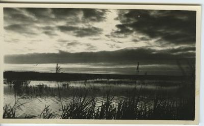 'Aftonstämning vid sjö. Vy med vass, sjö och skogsridå i bakgrunden. ::  :: Serie fotonr 953-971.'