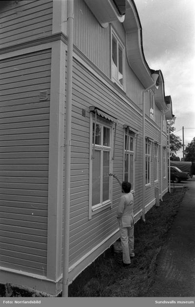Forslunds Måleri AB. Bilder från verksamheten med utvändig och invändig målning och tapetsering på olika adresser, bland annat Bleckslagaregatan 4 och Jakobsdalsgatan 6.