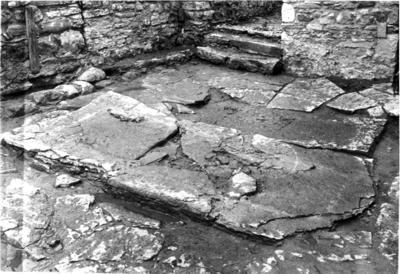 Gudhems kloster. Grav 8. Tumbans bottenhäll, in situ. Foto mot nordväst.