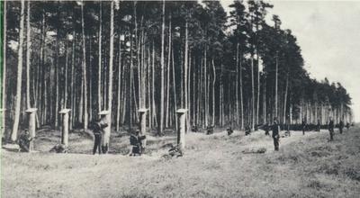 Karlsborg i början av 1900-talet