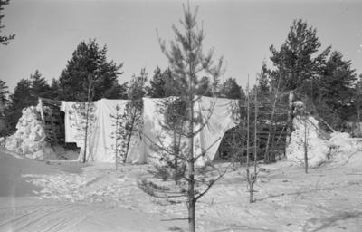 Kamouflerat flygplanvärn vid F 19, Svenska frivilligkåren i Finland. Ett vitt tyg hänger över värnet.