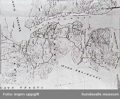 Del av sockenkartan från Sköns sn, omkring 1860.
