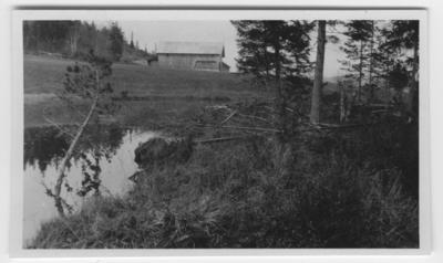 'Bäverhydda vid en bondgård eller lada. I förgrunden dammen. ::  :: Ingår i serie med fotonr. 1075-1078. Se även fotonr. 1069-1074.'