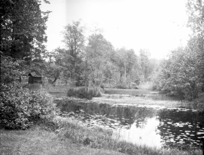 Vy över parken. År 1906.