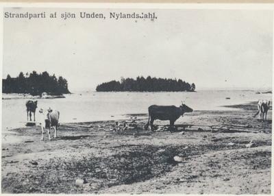 Karlsborg i början av 1900-talet.Strandparti av sjön Unden, Nylandsdahl.