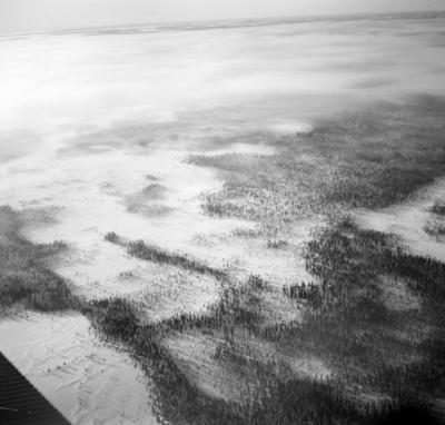 Flygfotografi av dimmigt landskap med barrskog. Bild från F 19, Svenska frivilligkåren i Finland.