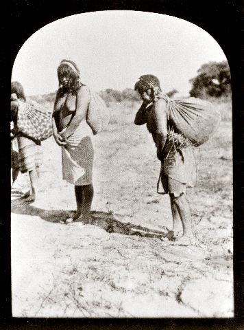 Choroti-intiaaninaiset kantavat villejä hedelmiä caraguatá-säkeissä