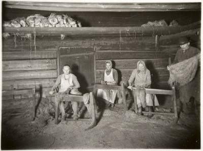 naiset lihtaavat pellavia Hykkilän Könnöllä