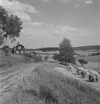 kylämaisema Karkkilasta