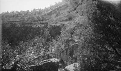 Chapin's mesa, Spring House Canyon (Bobcat C.), raunio 14 - Double House. Lähes sama kuva kuin VKK 420:69 mutta otettu hieman lähempää, niin että koko kallioasumus näkyy