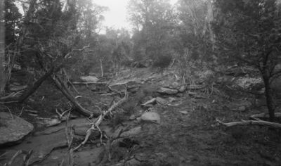 Wetherill's mesa, Mountain Sheep Canyon (Rock C.). Kodak Housen yläpuolella sijainneen vesisäiliön rauniot. Vas. sileää kalliota, jonka reunoilla laakeit irtokiviä, keskellä kuvaa kivilatomus. Raunio osittain puiden peittämä