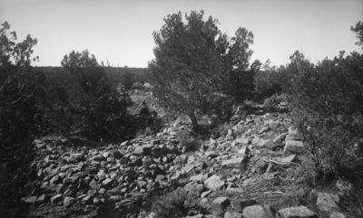 ilm. Richard Wetherill istumassa irtonaisten rakennuskivien keskellä mesan laella, jossa kasvaa isohkoja puita