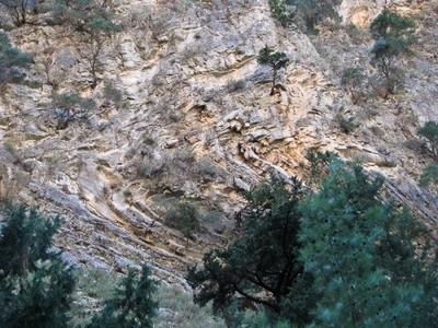 Πέτρωμα, Πλακώδεις ασβεστόλιθοι