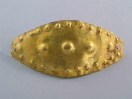 Златен нагръдник
