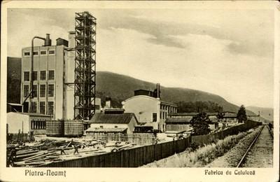 Piatra-Neamţ. Fabrica de celuloza