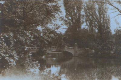 Vedere din Parcul Zăvoi