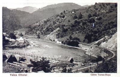 Valea Oltului - Turnu Roșu