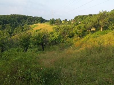 Landscape of Marca-Huta