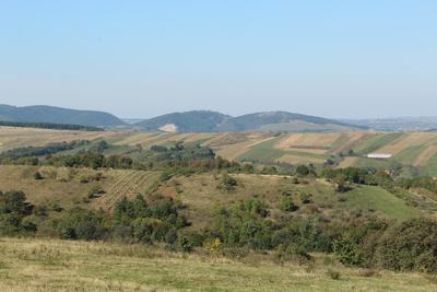 Landscape of Cosniciu de Sus