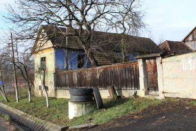 Casă de locuit din Drighiu (nr. 161)