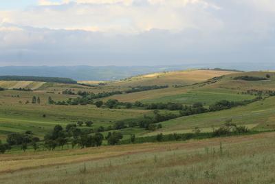 Landscape of Ratin