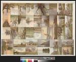 [Andruckbogen mit einer Serie von 32 Ansichtskarten mit Bäumen]