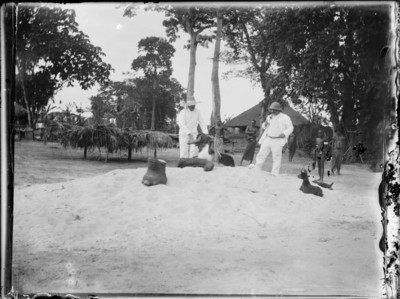 Coloniaux avec pied et trompe d'éléphant, Afrique #0724