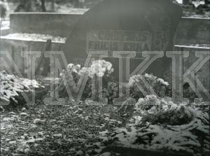 Fotogrāfija - Fr. Cinovska kapa vieta